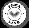 FEMA button.png