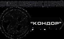 Лого Двери Кондор официальный сайт.png