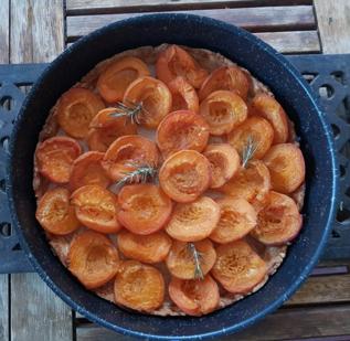 Real Food – Früchte und Gemüse erleben in Frankreich