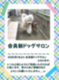 ☆会員制ドッグサロン.jpg