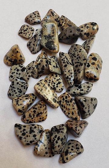 Dalmatian Stone tumbled large