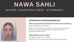 Candidature Alternance Commerce International