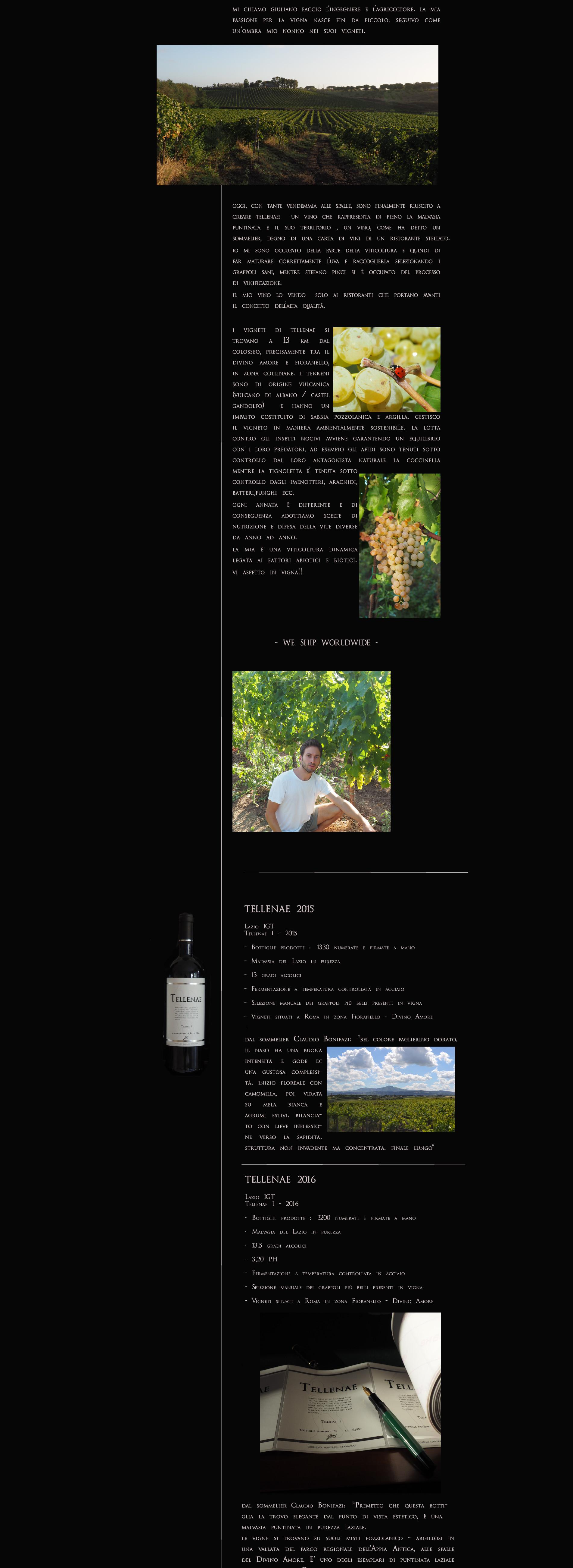 coccinella uva Carpineti Casale del Giglio Antinori Fattoria di Fiorano Fioranello Boncompagni Gaja Falesco  biologico riserva della cascina  vigna  sommelier azienda agricola aziena vitivinicola to
