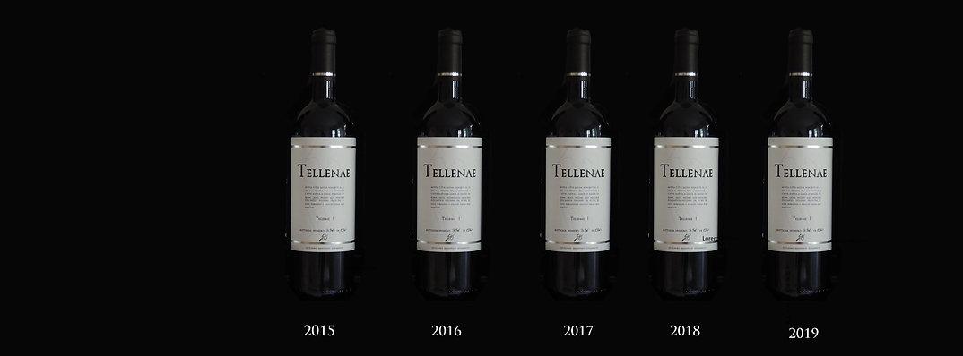 tellenae-1-vista-bottiglie.jpg