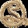 S_logo_no border.png