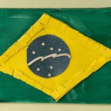 'Brazilian Flag' by Nuno (17)