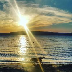 Instagram - #Yenikordon #Barışkordonu #Çanakkale #Çanakkaleboğazı #Deniz #Kumsal