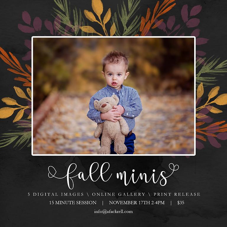 Fall Minis