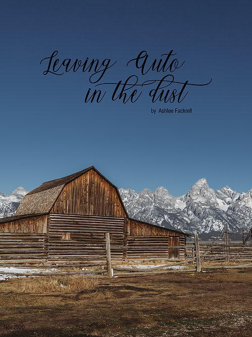 Leave Auto in the dust - E-book