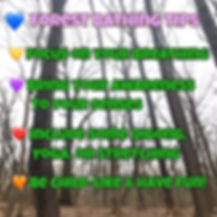 forestbathingtips.JPG