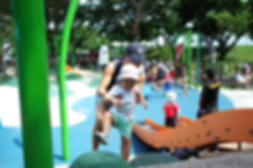 choa chu kang park, playground, singapore playground, playground equipment supplier singapore
