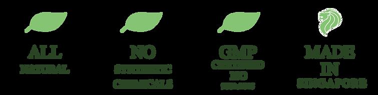 Leaf png-01.png