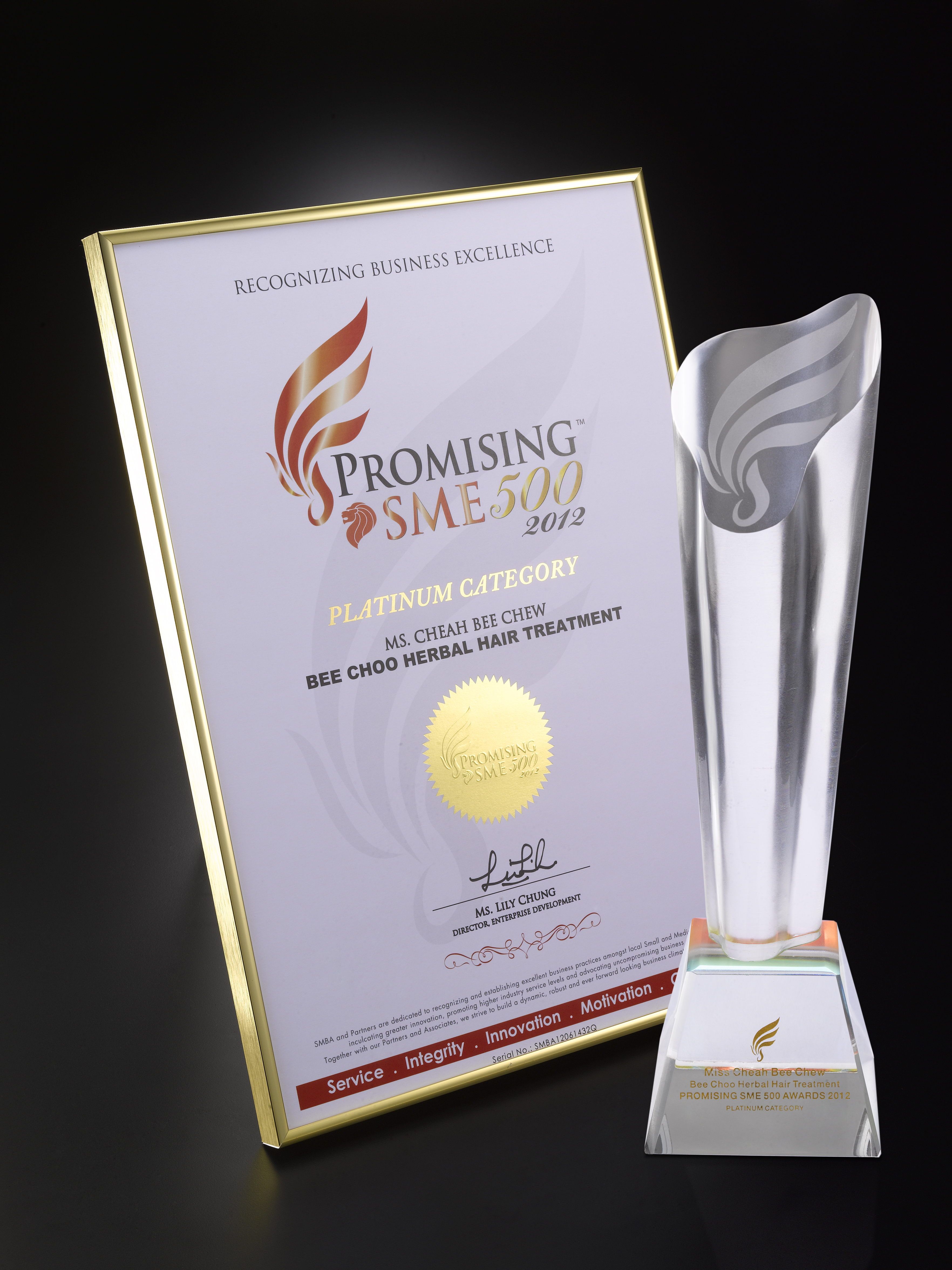 03-01.Promising SME 500 2012 Logo White1.jpg