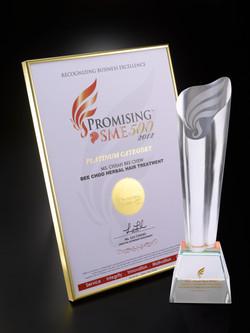 03-01.Promising SME 500 2012 Logo White1.jpg