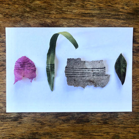 leaves, petals, ink