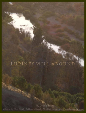 Lupines Will Abound