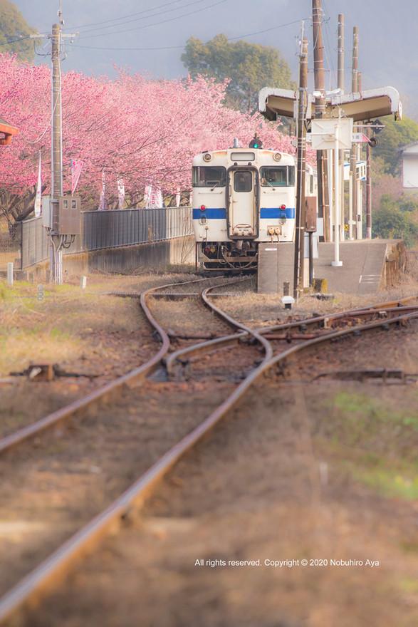 日南市 北郷駅