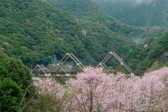 西米良村 かりこぼうず大橋