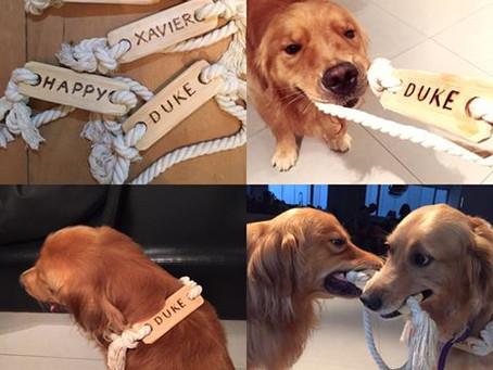 木製狗狗玩具班