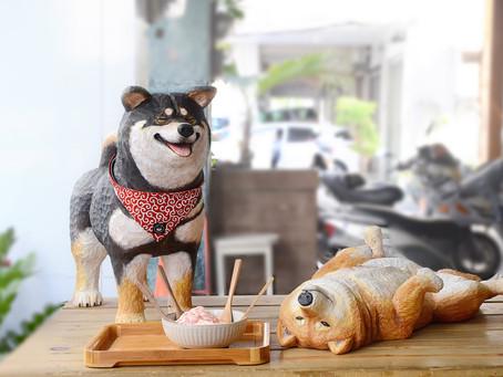 柴犬雕塑作品過程紀錄 (展示地點:此木二水@台中)
