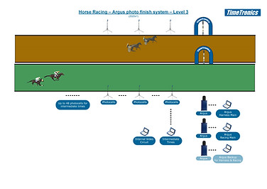 Horse Racing - Level 3