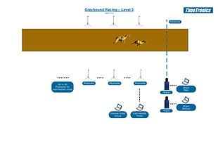 Greyhound Racing - Level 3