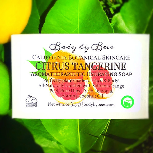 3-PACK CITRUS TANGERINE All-Natural Aromatherapy Soap