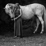 Pferdefotografie-Haßloch.jpg