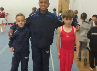 East Midlands Apparatus Competition 2017