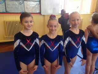 Cheam Competition Winter 2015