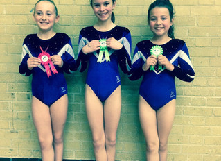 General Gymnastics Neon Summer Competition 2016