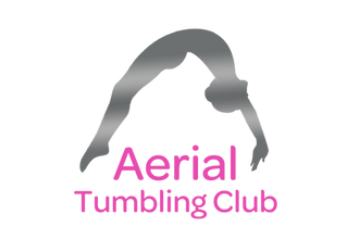 Aerial Tumbling Competition March 2019