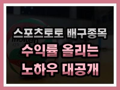 스포츠토토 배구배팅 전략 및 노하우 대공개