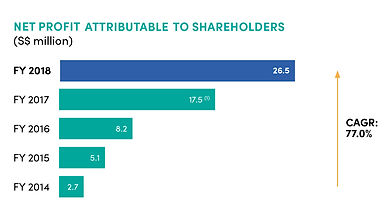 fy2018 npa to shareholders.jpg