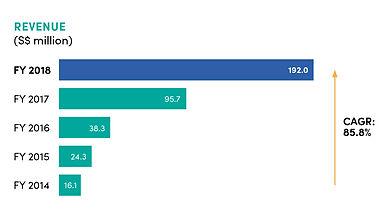 fy2018 revenue.jpg