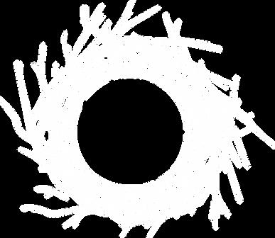 the Nest Logo nest only white.png