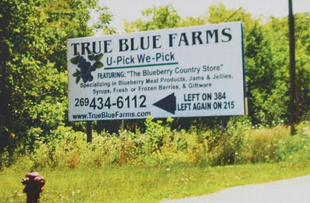Большие билборды привлекают внимание водителей и позволяют вам описать все продукты из голубики в вашем магазине.