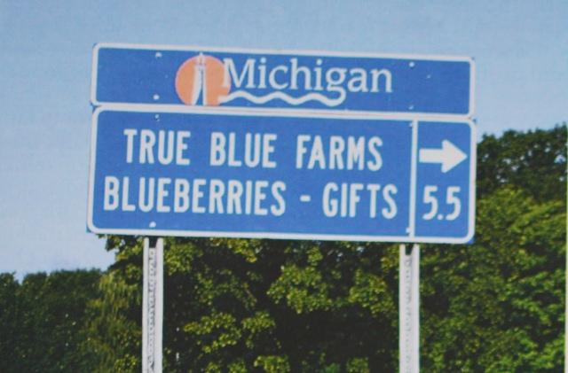 В Мичигане официальные дорожные знаки могут использоваться для указания местонахождения туристических достопримечательностей таких, как фермерские рынки.