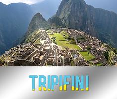 Tripifini Thumb.png