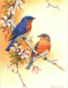 logo amis des oiseaux.jpg