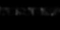RIIP FEST IX - logo black.png