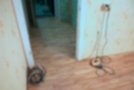 Паркетная доска в комнате и коридоре