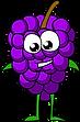 grapes1.png