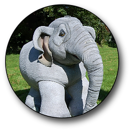 adambara the elephant walkabout