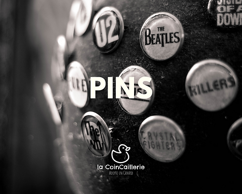 Pins et Broches