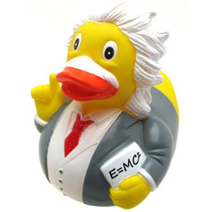 Canard Albert Einstein
