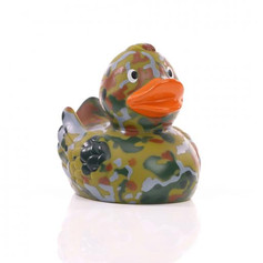 Canard Militaire