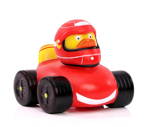 Canard Pilote F1