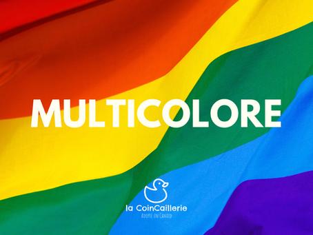 MULTICOLORE Canard CoinCaillerie 2.png