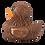 Thumbnail: Canard Chewie